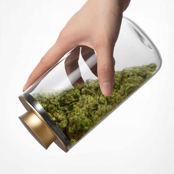 Cannabis-Aerzte-Stash Pro